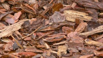 Rindenmulch & Kompost